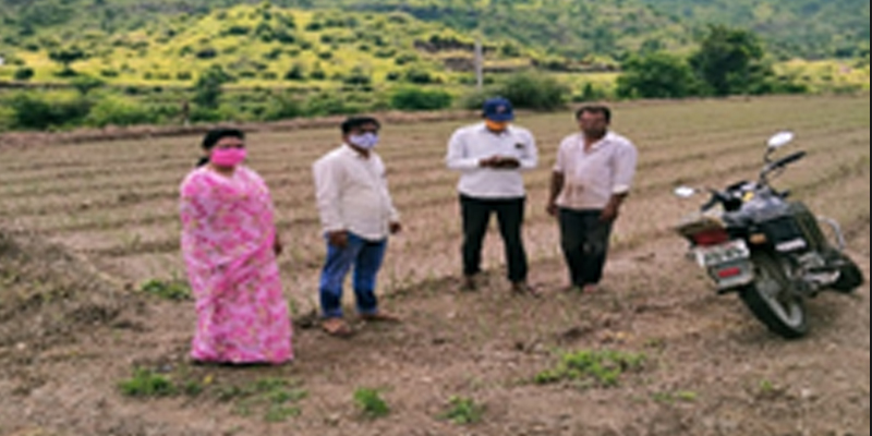 A Village Revenue Officer helps farmers to report data on the E-Peek Pahani app