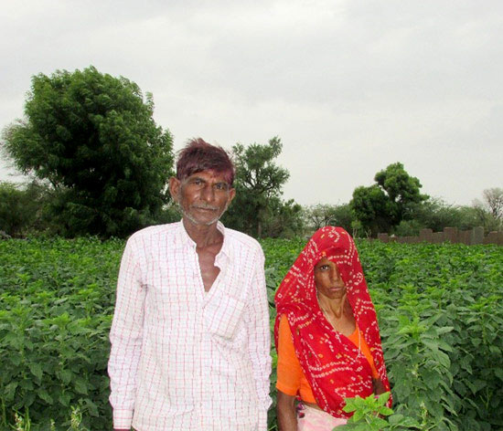Mohan and Pushpa are ensuring a better living by working on their agricultural land