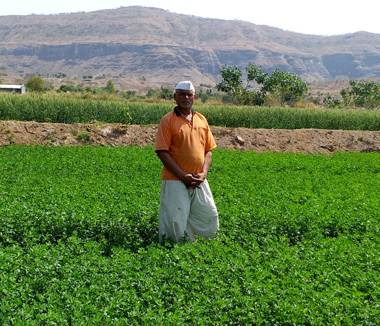 Babaji Walve's farm became highly productive once he spread silt