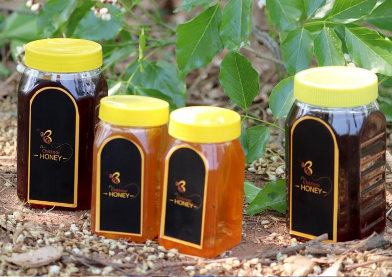 The final packaged and labelled product — Chittoor Pure Honey