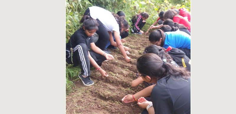 Children from the MIS school learn to farm