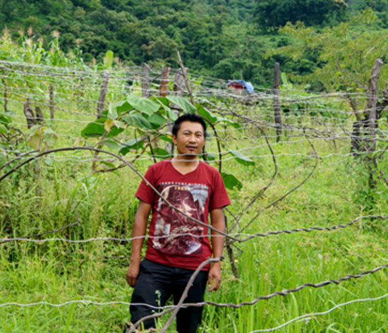 With improved knowledge about farming and allied activities, Z Thotreichan (Razai Khullen Village, Ukhrul District, Manipur), is now able to earn a decent income from his family farm