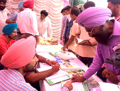 Improved practices of growing berseem has helped farmers in Punjab increase their production and their income